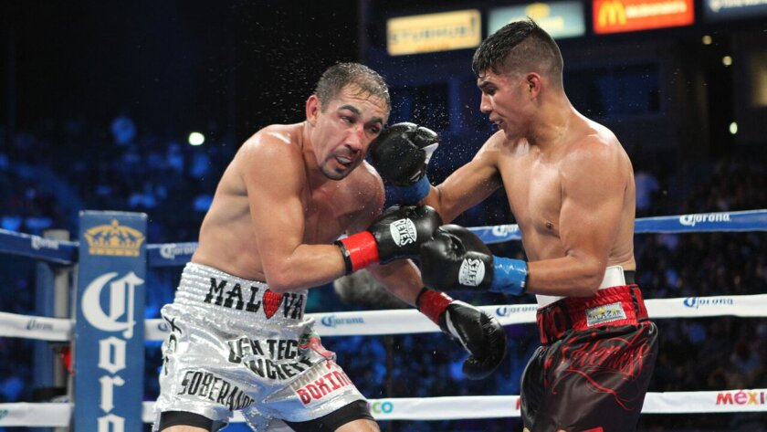 National City resident Antonio Orozco, right, takes on Humberto Soto on Oct. 3, 2015, at the StubHub Center in Carson, Calif. Orozco will fight unbeaten KeAndre Gibson this Saturday at the Cosmopolitan in Las Vegas on ESPN2.