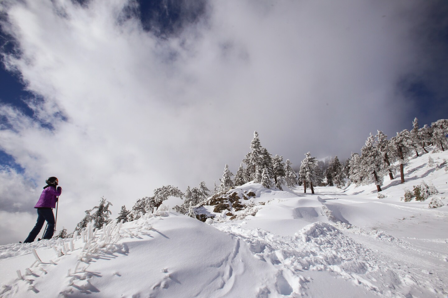 A skier looks up toward fresh snow from a recent El Niño storm at the Mt. Baldy Ski Area on Jan. 7.
