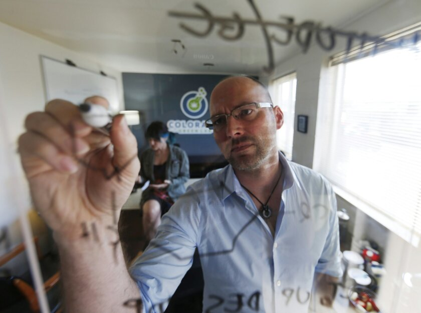 In this Wednesday, June 17, 2015 photo, Frank Conrad, head of pot-testing lab Colorado Green Lab, charts potency levels of marijuana while his co-worker, Cindy Blair, works behind, at the lab in Denver. In states that regulate marijuana, officials are just starting to draft rules governing safe levels of chemicals. (AP Photo/David Zalubowski)