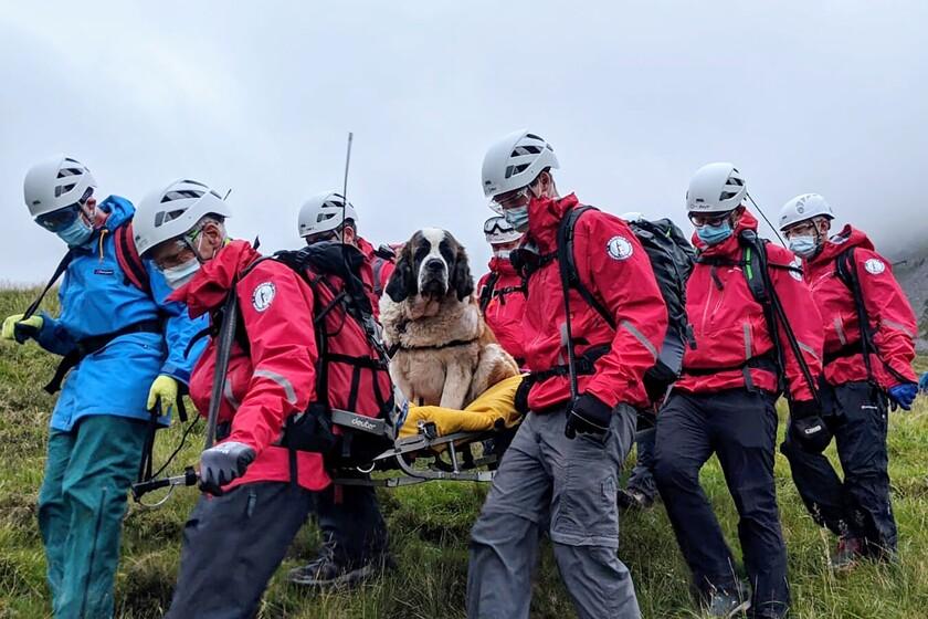 Volunteers carry Daisy, a 121-pound Saint Bernard, from England's highest peak on Sunday.