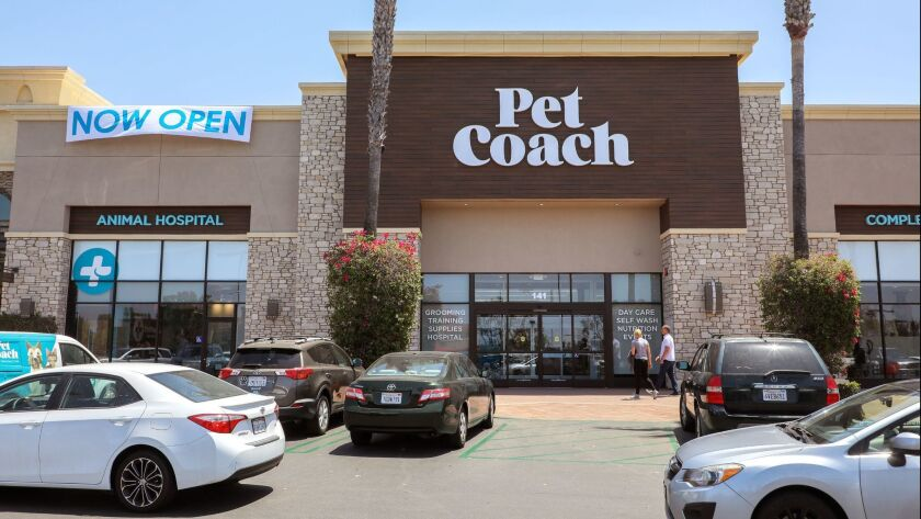 Exterior view of the new PetCoach store in the Grand Plaza shopping center in San Marcos.