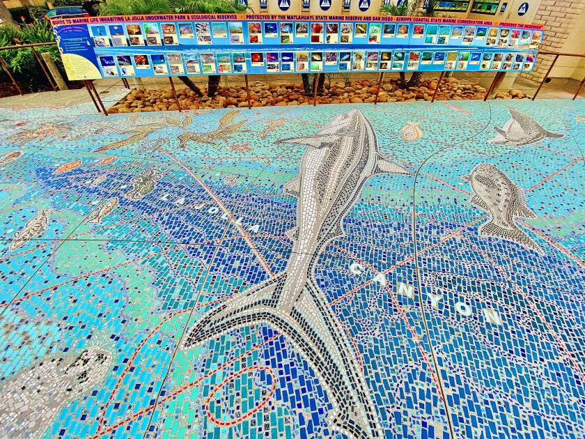 Some of the marine life depicted in The Map mosaic.