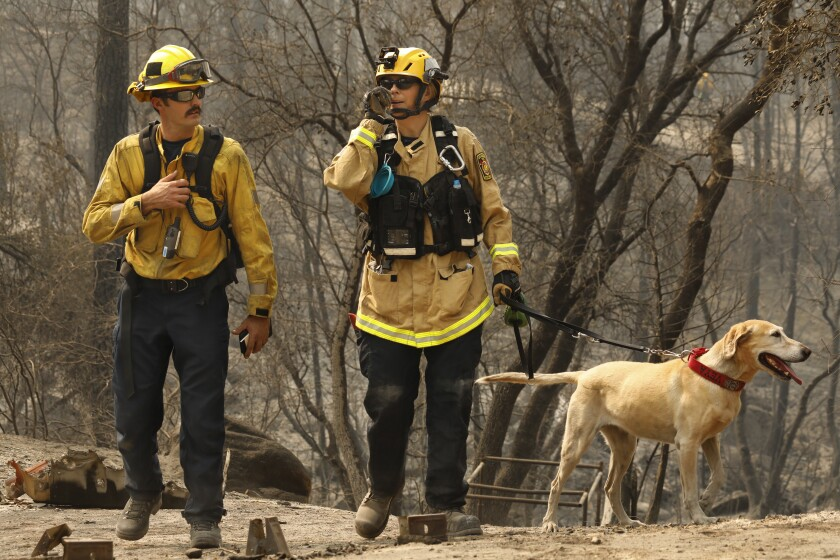 Margaret Stewart, center, and Ben Arnold along with working dog Veya, search rural Butte County for victims.