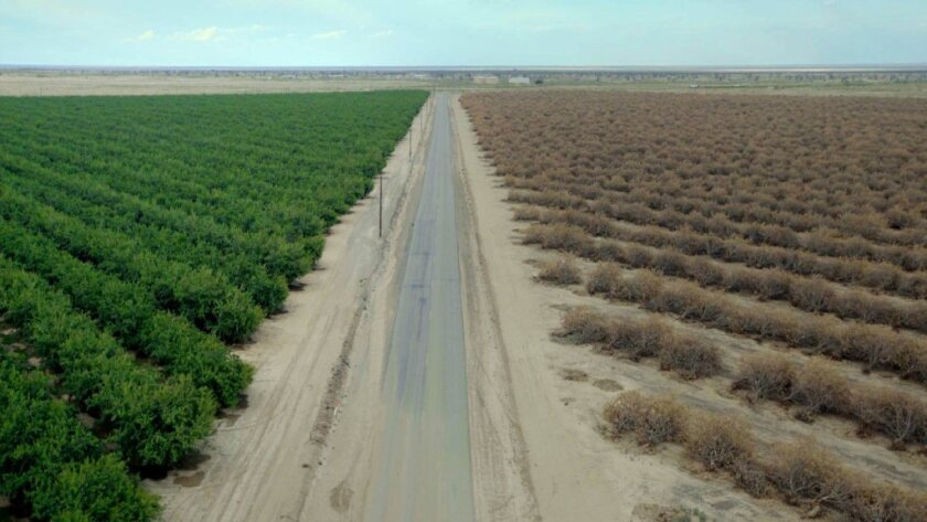 """A still from """"Water & Power: A California Heist"""" by Marina Zenovich, an official selection of the U.S. Documentary Competition at the 2017 Sundance Film Festival."""