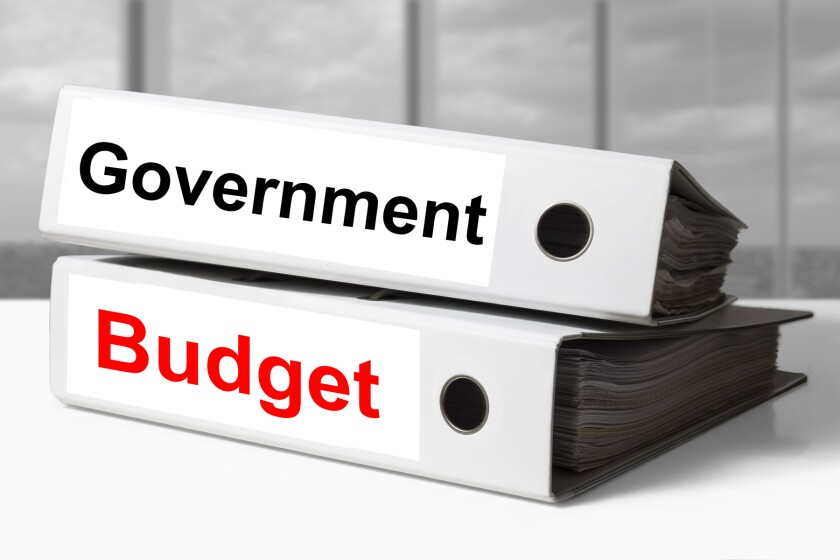 binders with government and budget written on them