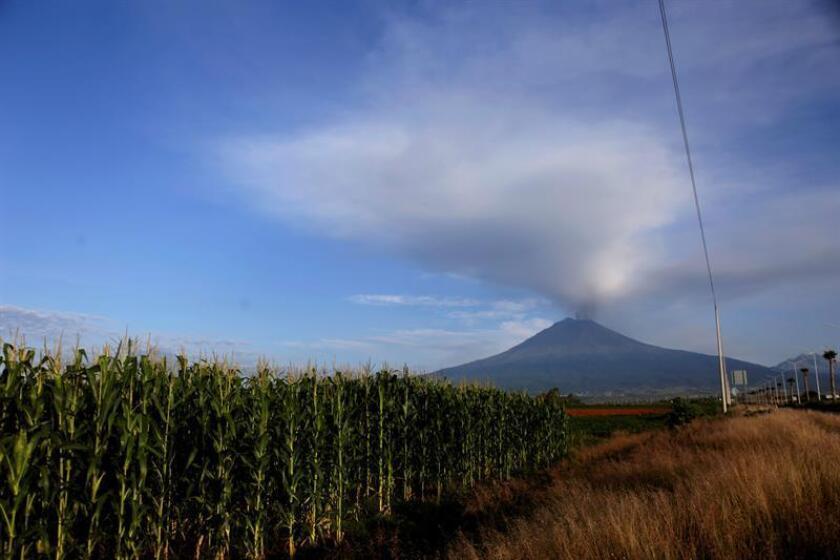 Varias exhalaciones del volcán Popocatépetl acontecidas en las últimas horas han generado una nube de ceniza que ha llegado hasta la Ciudad de México, informó hoy el jefe de Gobierno capitalino, José Ramón Amieva. EFE/ARCHIVO