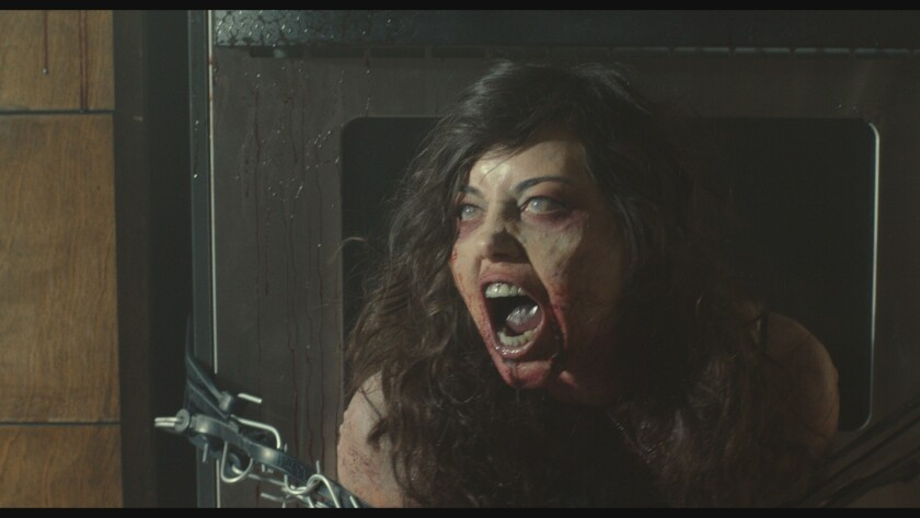 Aubrey Plaza in 'Life After Beth'