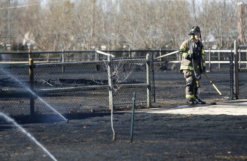 In this photo taken on Monday, Feb. 8, 2016, a Broken Arrow firefighter returns equipment to his fire truck after battling a grass fire in a neighborhood in Broken Arrow, Okla. The fire burned through several yards but no homes were damaged. (James Gibbar/Tulsa World via AP) ONLINE OUT; KOTV OUT; K