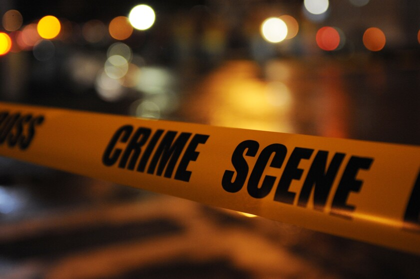 An unidentified woman was mauled to death by a pit pull in Washington, D.C.