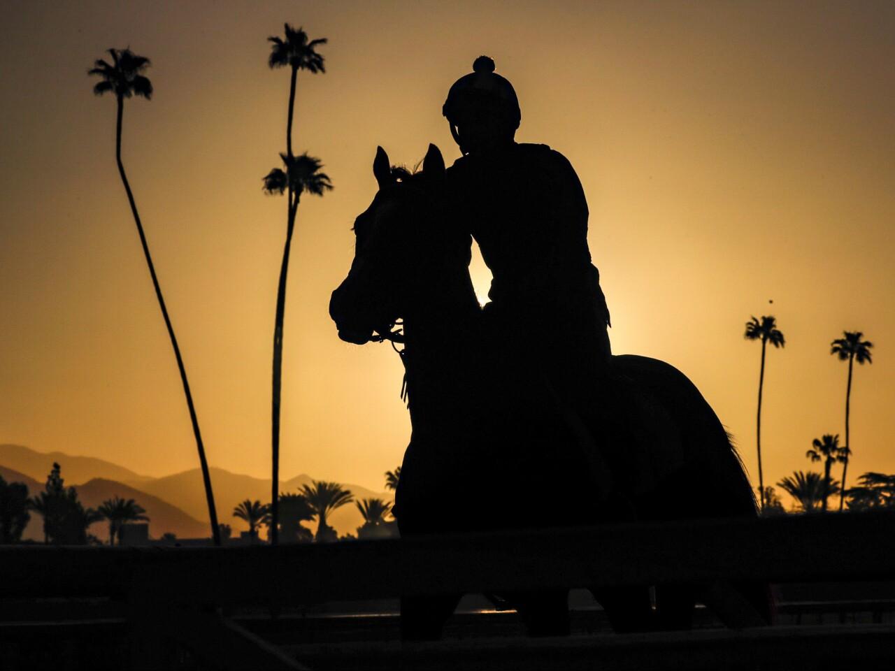 Horse racing resumes at Santa Anita