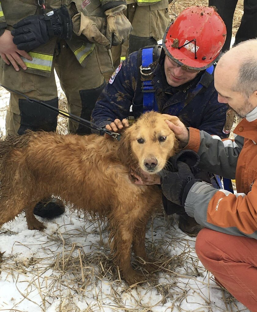 In this photo provided by Ryan McCaughey, rescue workers check Skye, a golden retriever, after being rescued in State College, Pa., Wednesday, Feb. 17, 2016. The dog that spent two nights stuck in a 14-foot-deep sinkhole was rescued Wednesday by firefighters using a makeshift harness. (Ryan McCaugh