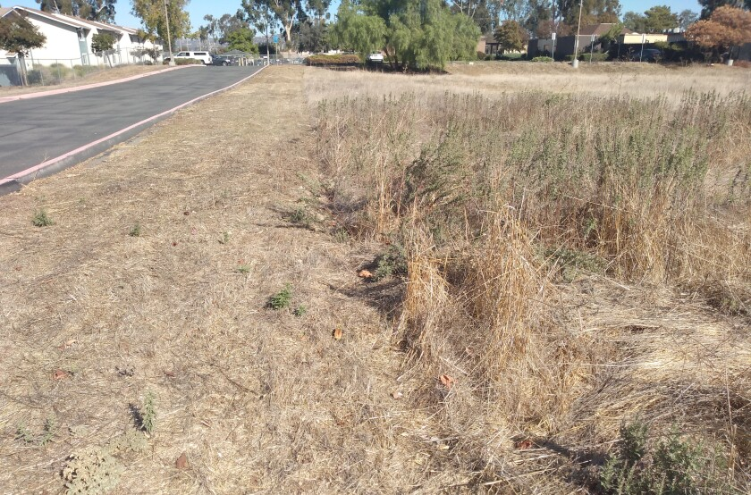 Ramona Municipal Water District directors have agreed to allow the county to enforce a defensible space ordinance.