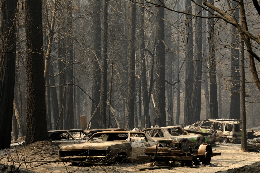 Charred shells of automobiles and bare tree trunks left by the North Complex fire in Berry Creek in early September.