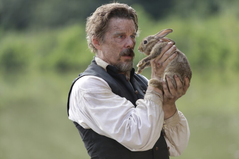 """Ethan Hawke as driven abolitionist John Brown talks to a rabbit in """"The Good Lord Bird."""""""
