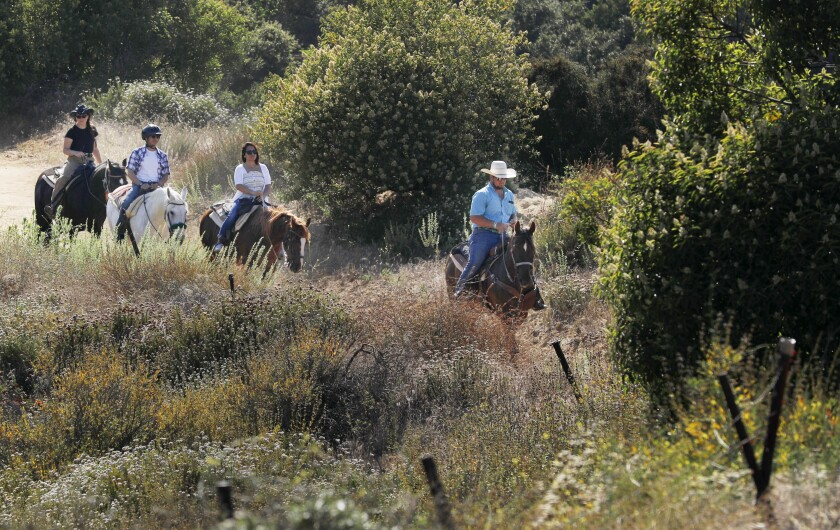 Head trail guide Cole Wade leads riders near the Los Angeles Horseback Riding ranch in Topanga Canyon in July 2019.