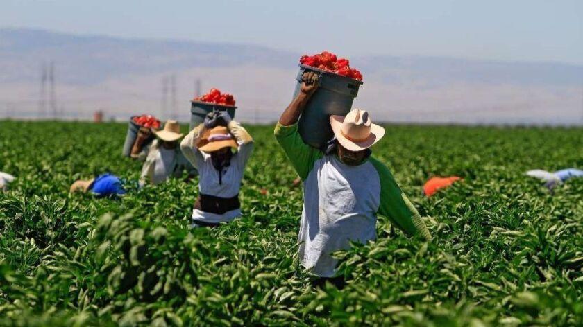la–me–adv–farmworkers