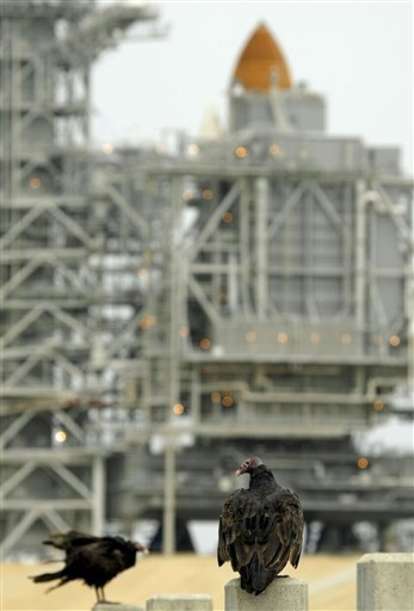 A pair of vultures perch on concrete poles near the space shuttle Endeavour Thursday morning July 9, 2009 at the Kennedy Space Center in Cape Canaveral, Fla. Seven astronauts are scheduled to liftoff Saturday evening on a trip to the international space station. (AP Photo/Chris O'Meara)