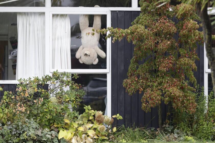Virus Outbreak New Zealand Bears