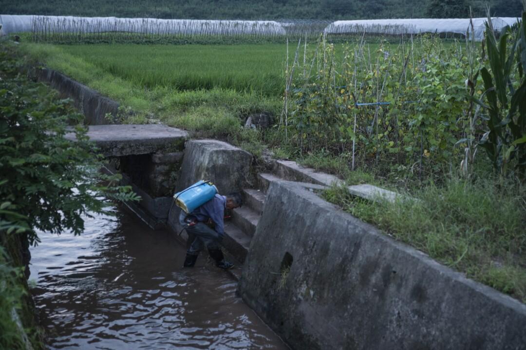 A farmer in Xixinan village steps into a stream encased in concrete.