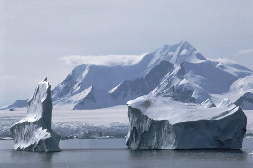 Icebergs near Adelaide Island