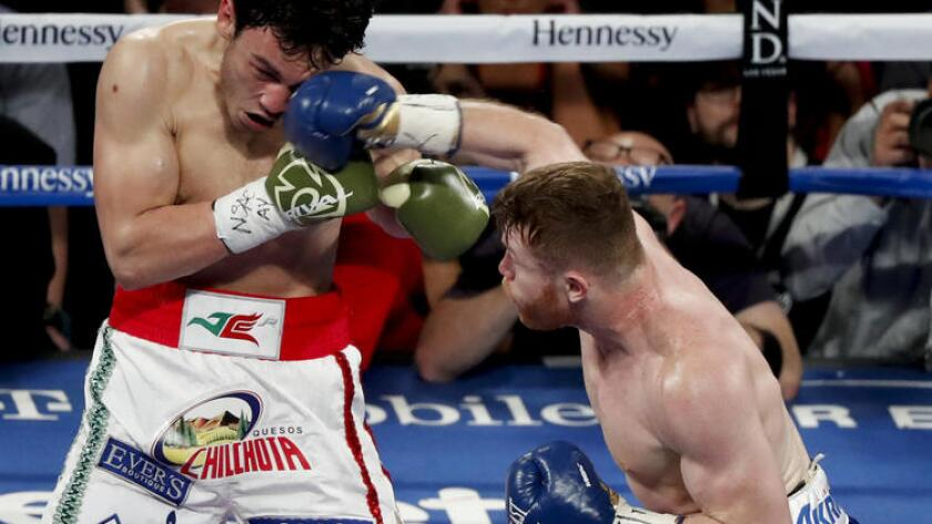 Canelo vs  Chavez Jr : Round-by-round recap - Los Angeles Times