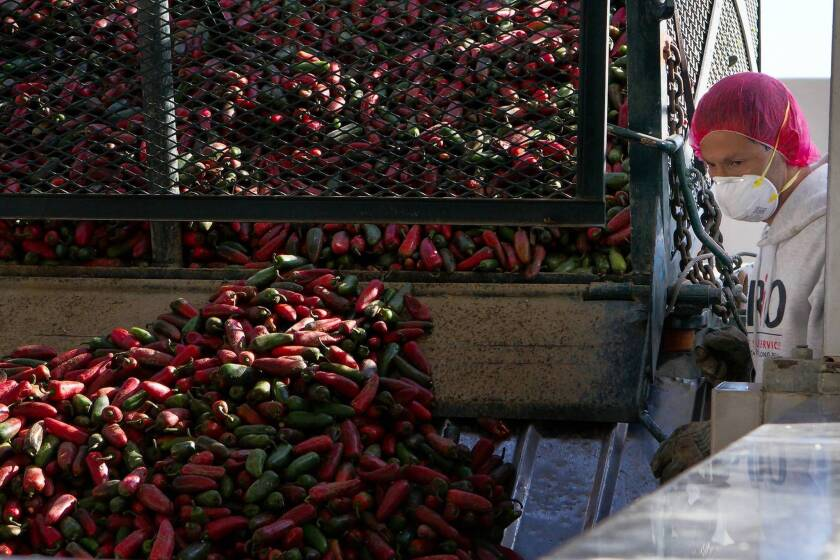 Judge allows Irwindale factory to continue producing Sriracha