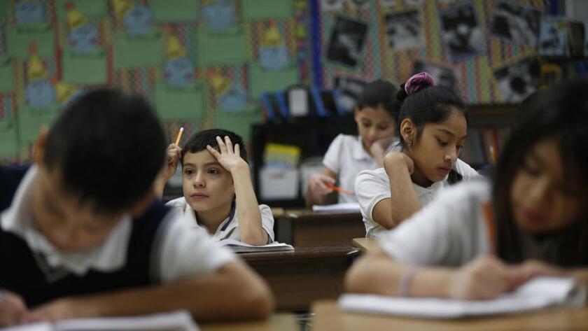 Un análisis de USA Today encontró huecos en una base de datos nacional de maestros que fueron disciplinados o a quienes se les habían revocado sus licencias (Jose M. Osorio / Chicago Tribune).