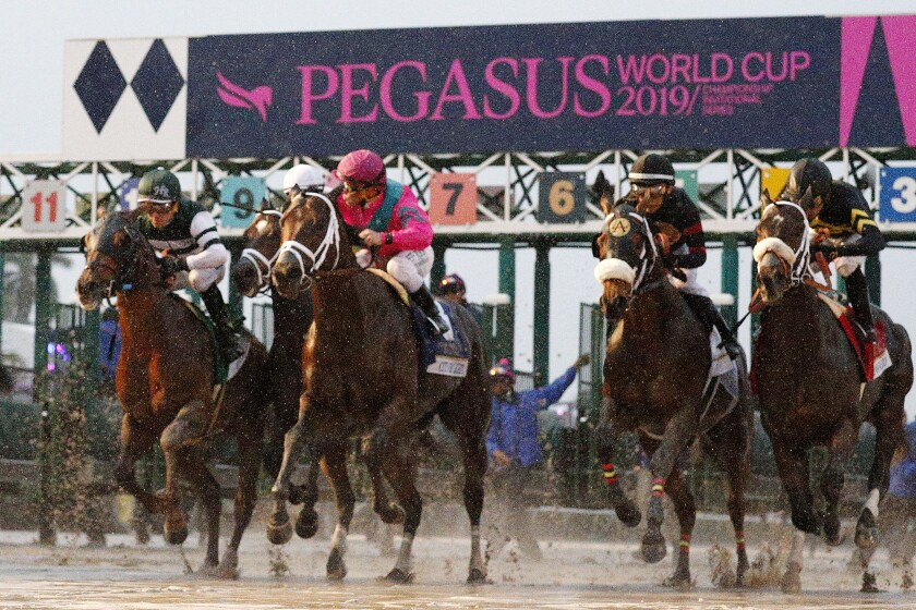 The field breaks from the gate at the start of the Pegasus World Cup on Jan. 26, 2019, at Gulfstream Park.