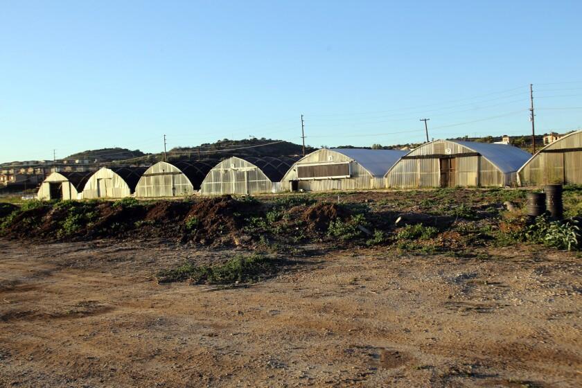 Future Foods Farm