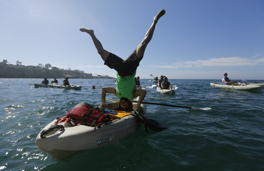 Want To Hang With La Jolla S Rock Stars Kayak To Them