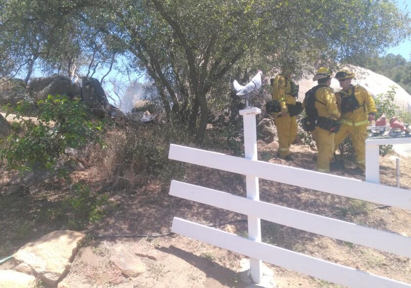 Copy - Firefighters Beside Blaze.jpg