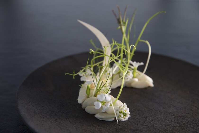 Live scallop, almond and wild fennel frond.