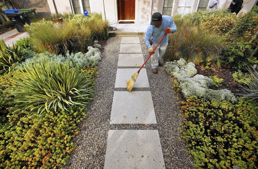 Elias Hernandez, on the maintenance team with landscaping firm FormLA in Tujunga, sweeps the drought-resistant plantings at a Los Angeles client's home.
