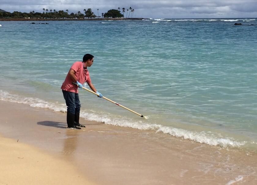Scott Muranka of the Hawaii Department of Health takes a water quality sample Tuesday at Ala Moana Beach Park in Honolulu.