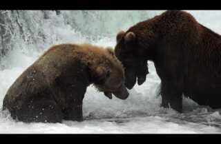 Postcards From the West | Katmai National Park, Alaska