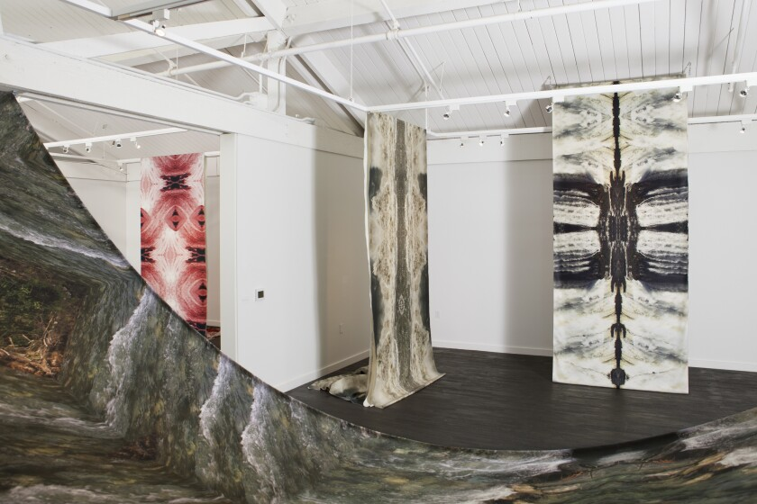 An installation view of Carolina Caycedo's water portraits at OCMA
