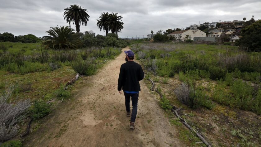 Botanist Patrick Tyrrell walks through the Ballona wetlands