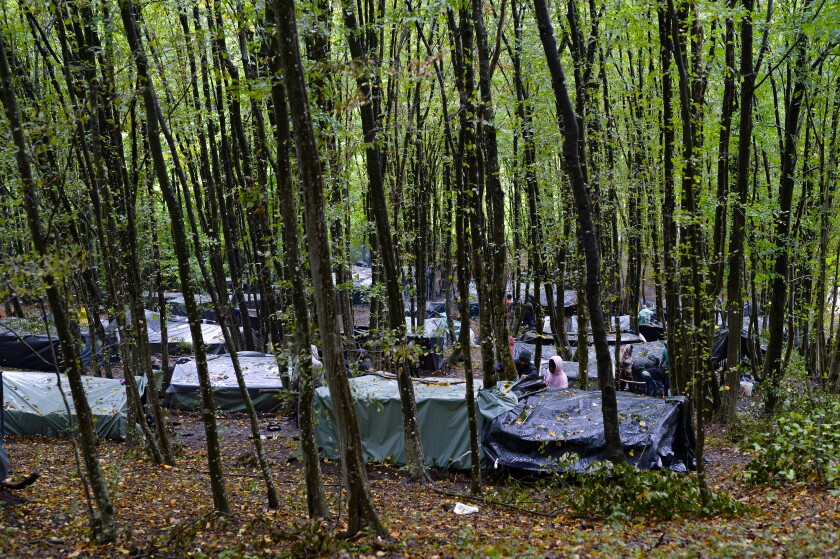 Campamento de migrantes en un bosque de las afueras de Velika Kladusa, Bosnia, en foto del 26 de septiembre del 2020. Los migrantes sueñan con cruzar la frontera con Croacia, miembro de la Unión Europea, pero quedaron varados del lado bosnio de la frontera. (AP Photo/Kemal Softic)