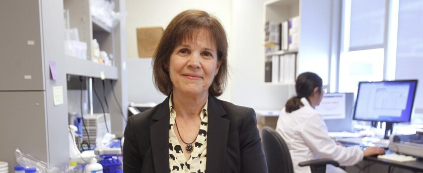 Dr. Christina Chambers is leading the new birth-defects project at Rady Children's Hospital San Diego. / photo by Hayne Palmour IV * U-T San Diego