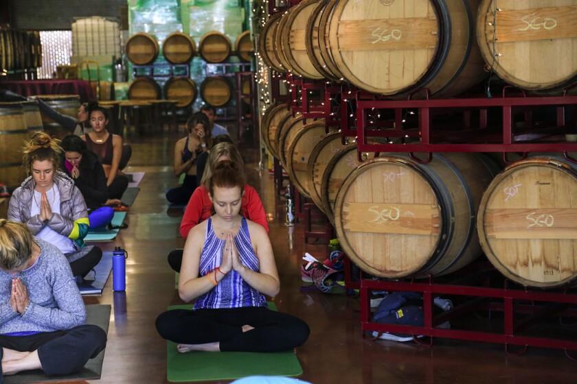 pac-2501766-sd-me-yoga-fest-hl020