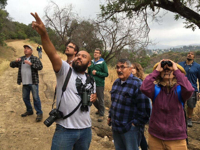 Audubon Center director Marcos Trinidad leads a group of birders along the Scrub Jay Trail at Debs Park.