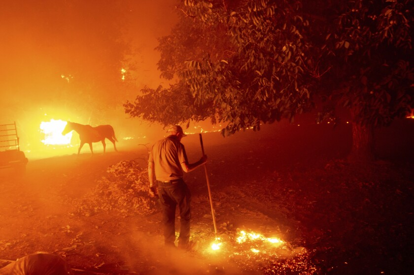 Essential California Fires Have Already Burned More Acres Statewide In 2020 Than During All Of 2019 Los Angeles Times