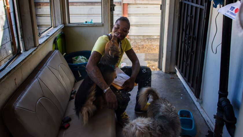 LOS ANGELES, CA - SEPTEMBER 28, 2017: Tamara Makee spends time with her dogs where she lives on the