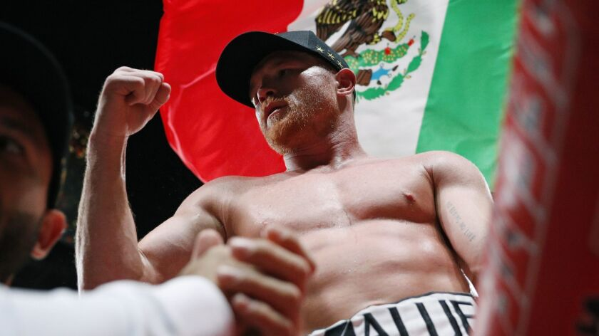 Canelo Alvarez, of Mexico, celebrates after defeating Daniel Jacobs in a middleweight title boxing m