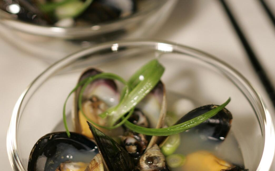 Mussels, clams and periwinkles in miso broth