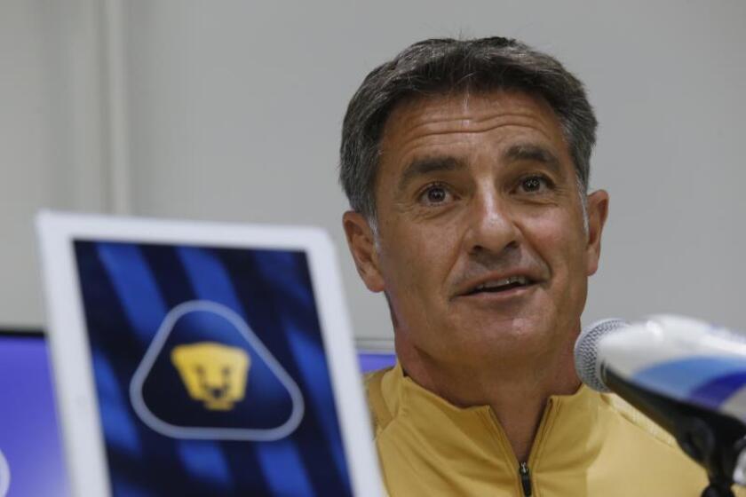 El entrenador español José Miguel González Martín del Campo (Michel) habla tras el entrenamiento con su equipo, Pumas de la UNAM, este martes en Ciudad de México (México). EFE/Francisco Guasco