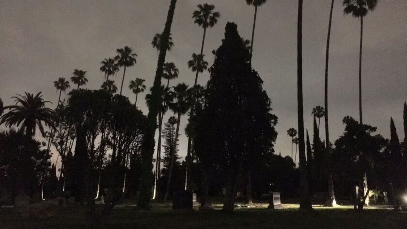 Hollywood Forever.
