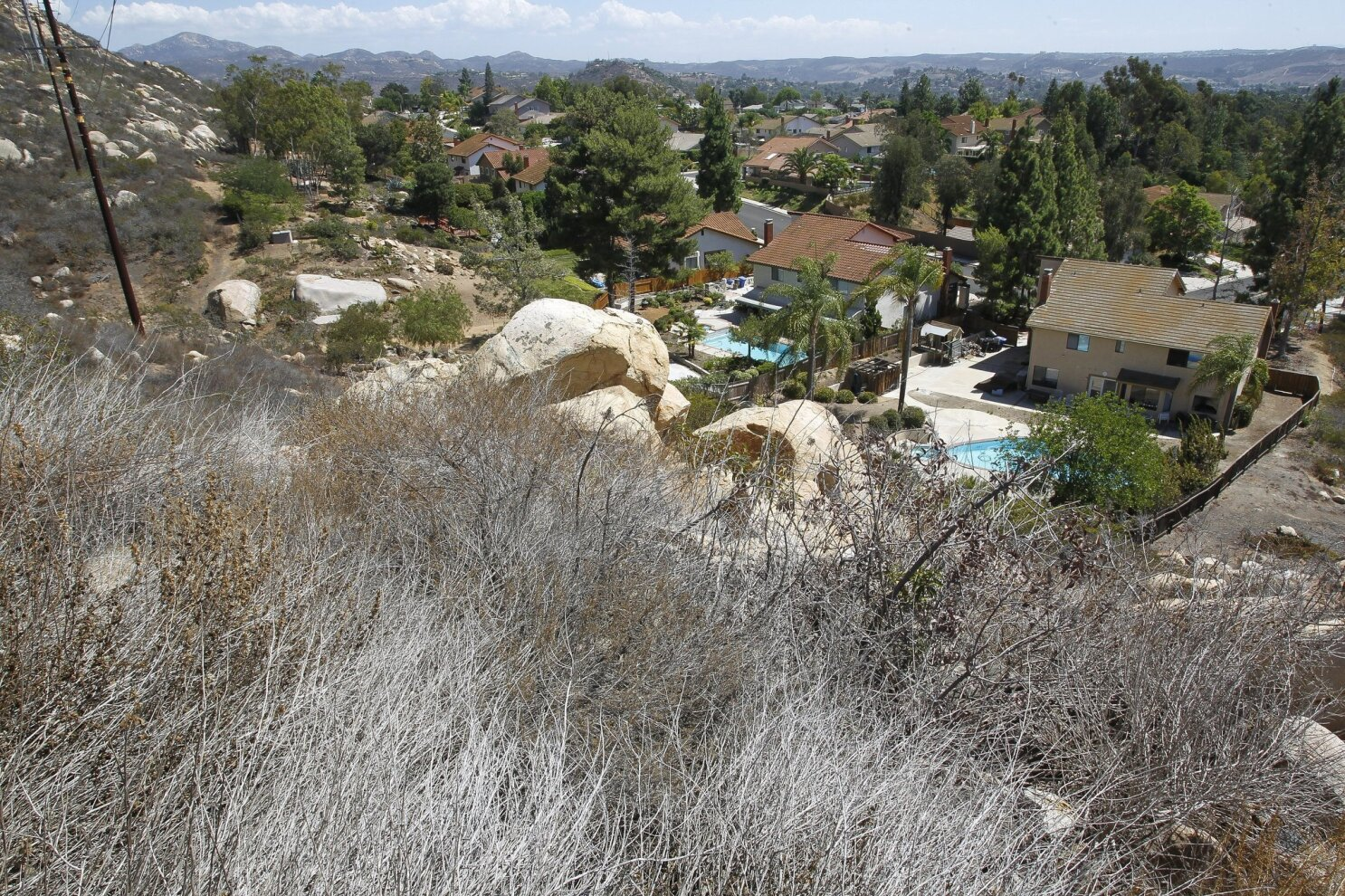 Dry brush could lead to big fires - The San Diego Union-Tribune