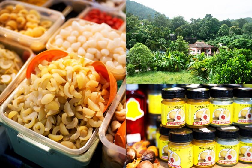 Pickled nutmeg, Ghee Hup Nutmeg factory and nutmeg balm