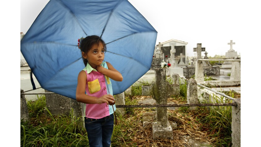 At the burial of Norma Casiano Rivera, Nashka Camila Riveiro, 6, stands with her umbrella. She will be moving to Orlando, Fla., to go to school as the schools in Lajas are closed.(Carolyn Cole / Los Angeles Times)